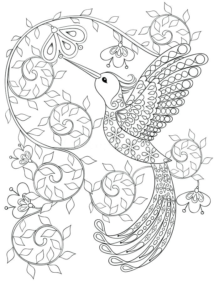 683x900 Coloring Pages Of Hummingbirds Download Page With Hummingbird