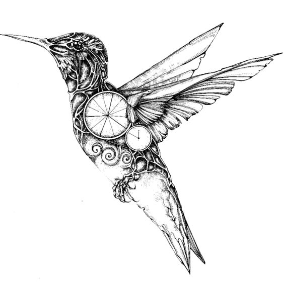 564x563 Drawn Hummingbird Mechanical Animal