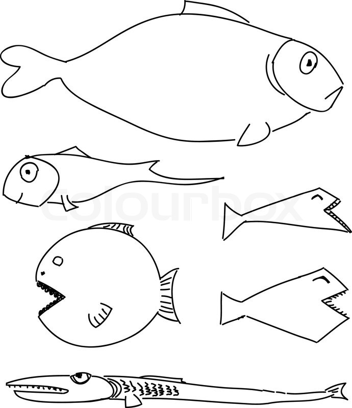 690x800 Humorous Drawing Fish Stock Vector Colourbox