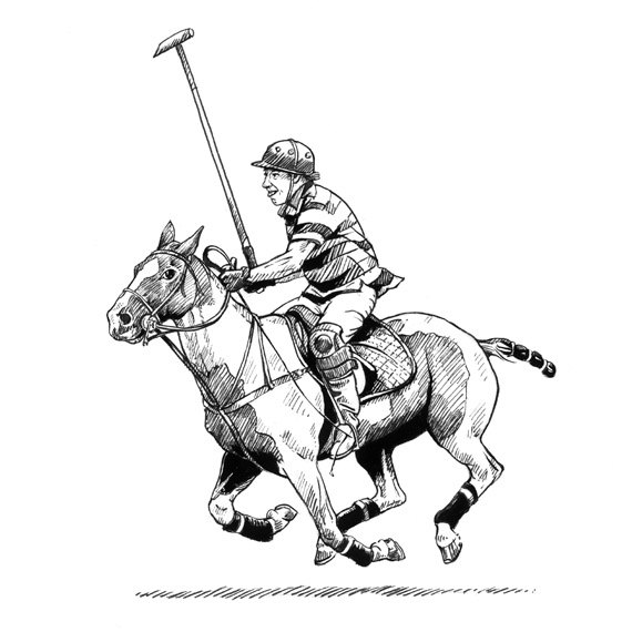 570x570 Your Line Humorous Drawing Of Very Eager Polo Player And Pony