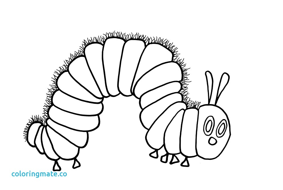 991x668 The Very Hungry Caterpillar Coloring Pages Awesome Very Hungry