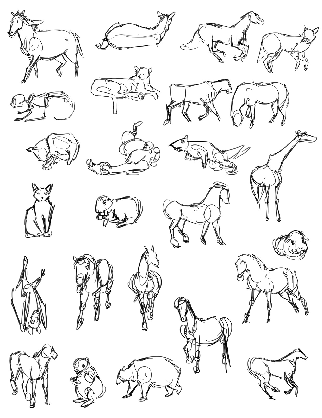 1236x1600 Casey Hunt Gesture Drawing Tool Animals! Animal Drawing Refs