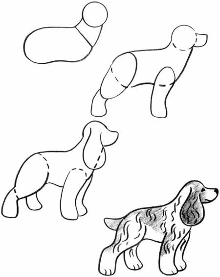 450x565 How To Draw Dogs