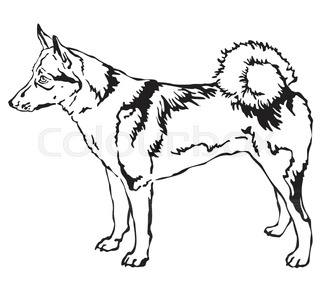 320x283 A Simple Drawing A Hunting Dog. The East Siberian Laika Stock