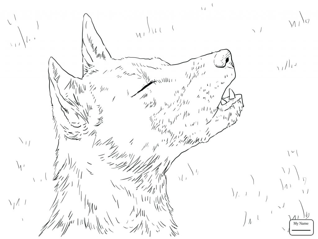 1024x768 Coloring Pages ~ Hunting Coloring Pages Mammals Wild Dog