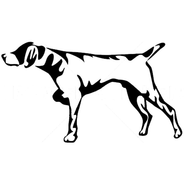 Hunting Dogs Drawing