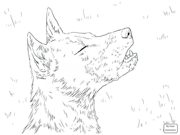 728x546 Coloring Pages Dogs Online Mammals Wild Dog Or Painted Hunting