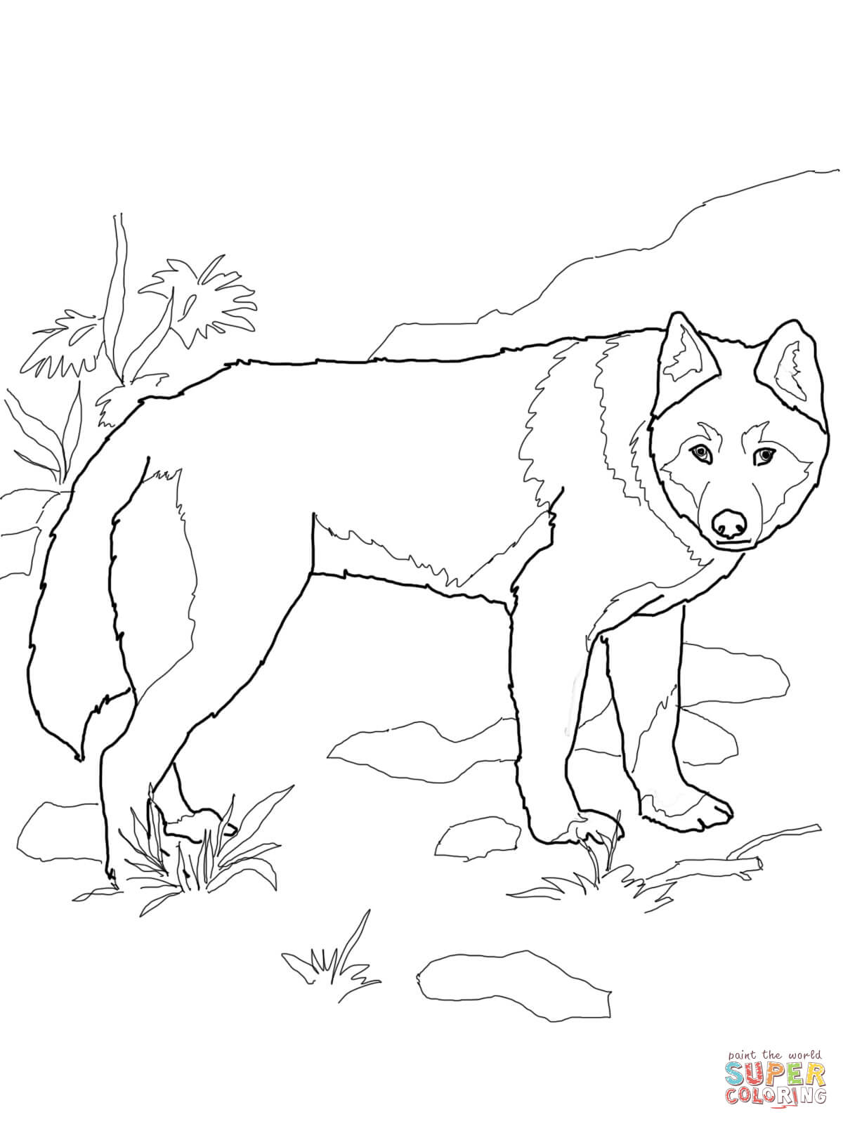 1200x1600 African Wild Dog Or Painted Hunting Dog Coloring Page Free