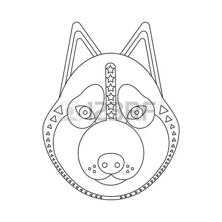 Husky Dog Drawing