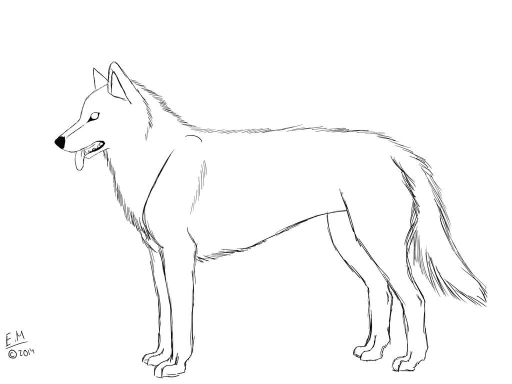 Husky Drawing at GetDrawings   Free download