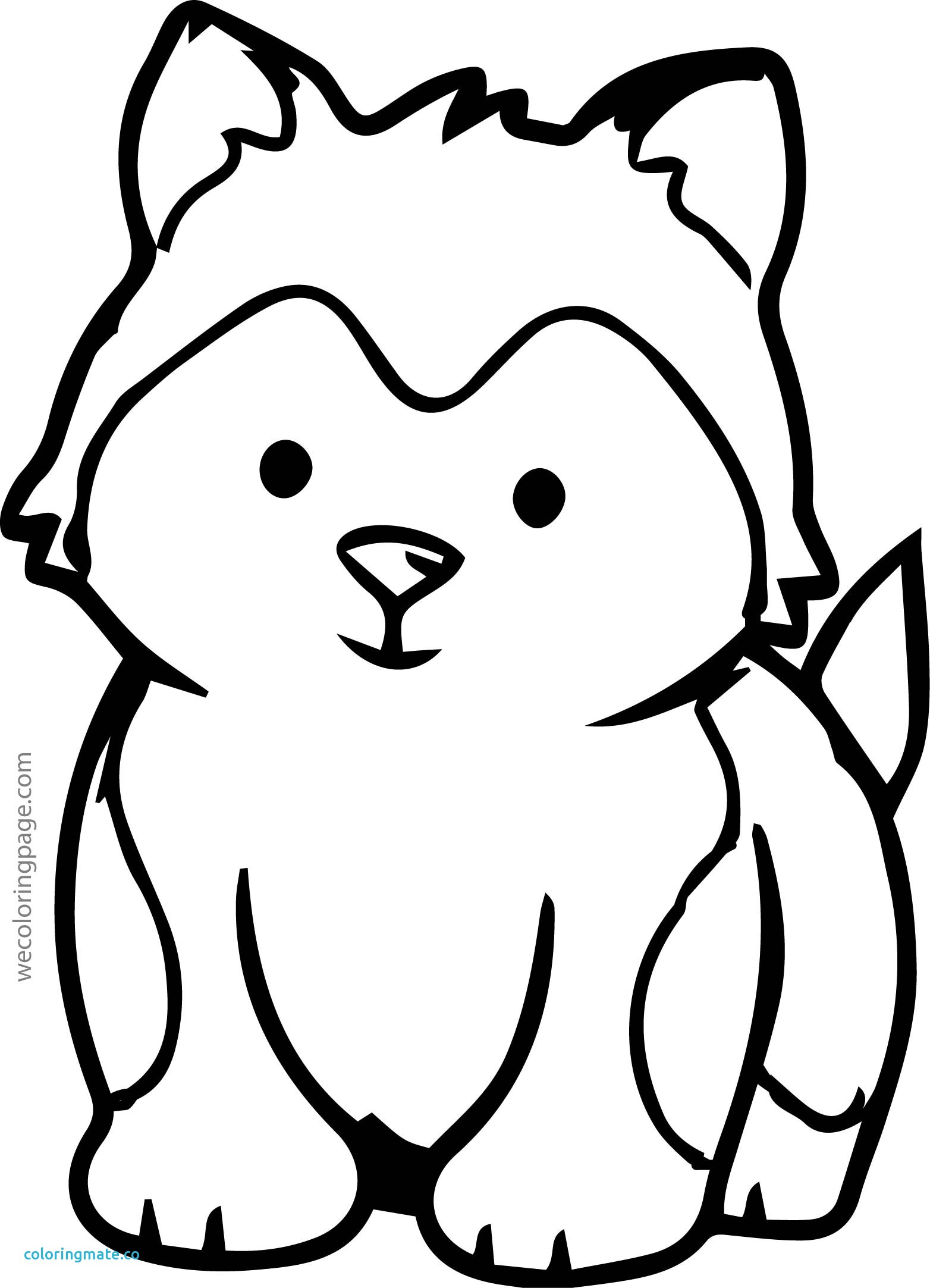 1564x2165 Baby Face Coloring Page Beautiful Cartoon Bear Face Cliparts Co