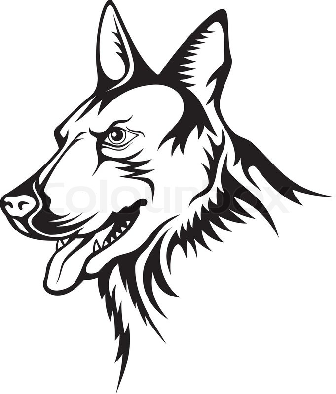 681x800 Tattoo Illustration Of German Shepherd Guard Dog Stock Vector
