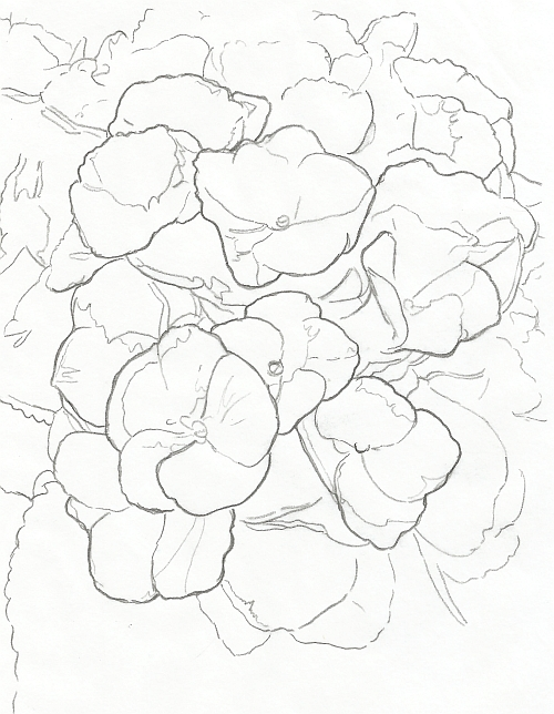 500x644 How To Draw Complex Flowers Part 1