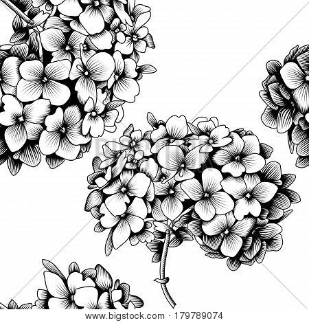 450x470 Seamless Pattern Hydrangea Flower Vector Amp Photo Bigstock