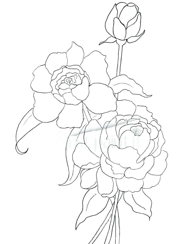 801x1001 Coloring Awesome Free Printable Flowers. Free Printable Flowers