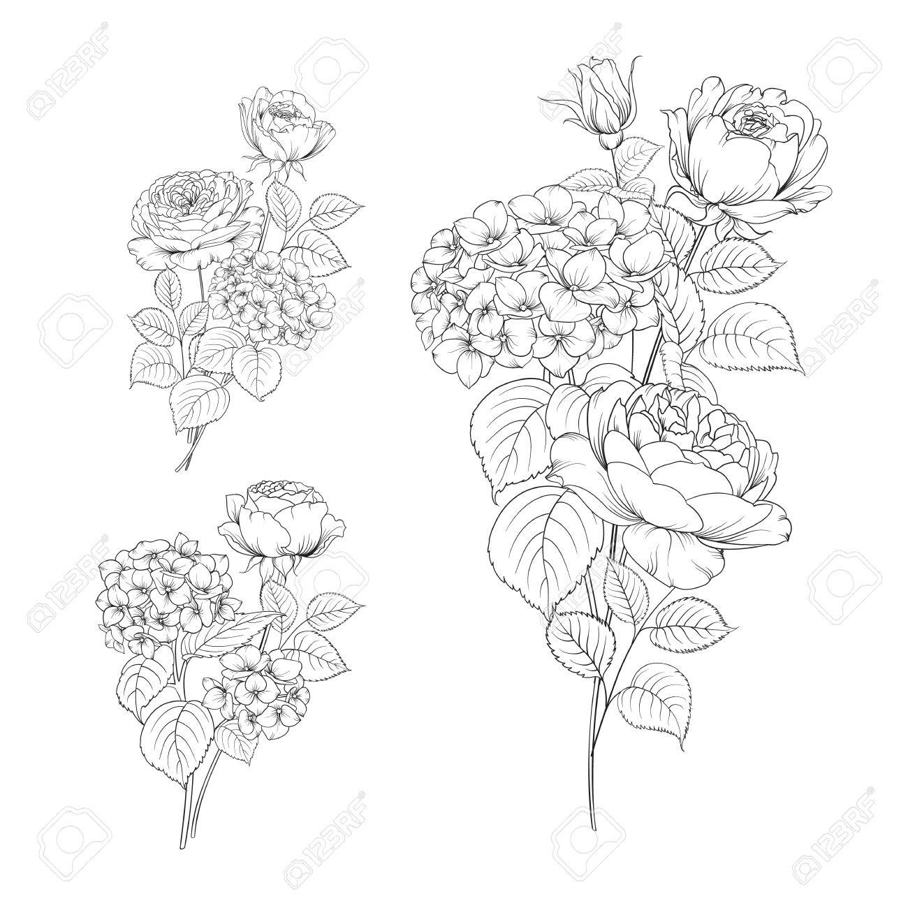 1300x1300 Floral Garland Of Hydrangea And Rose On White Background. Flower