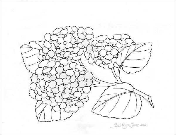 600x461 Free Coloring Pages