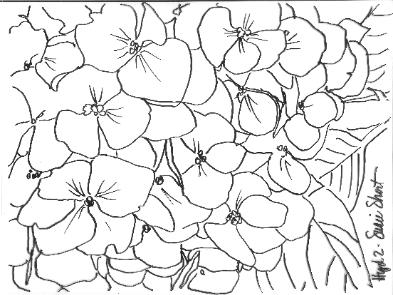393x295 Free Hydrangea Photo And Pattern By Susie Short