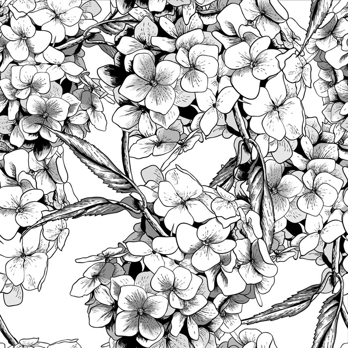 700x700 Monochrome Seamless Background With Hydrangea Wall Mural Pixers