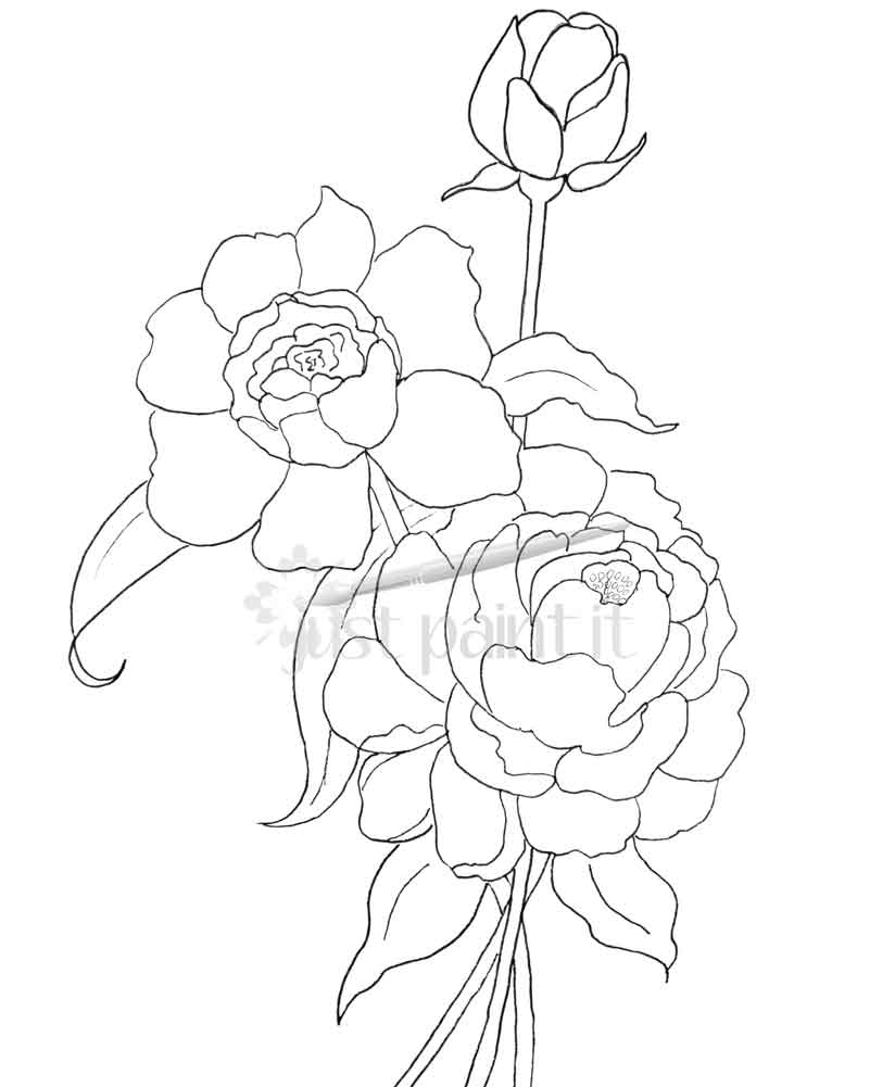801x1001 Hydrangea And Peonies Coloring Pages