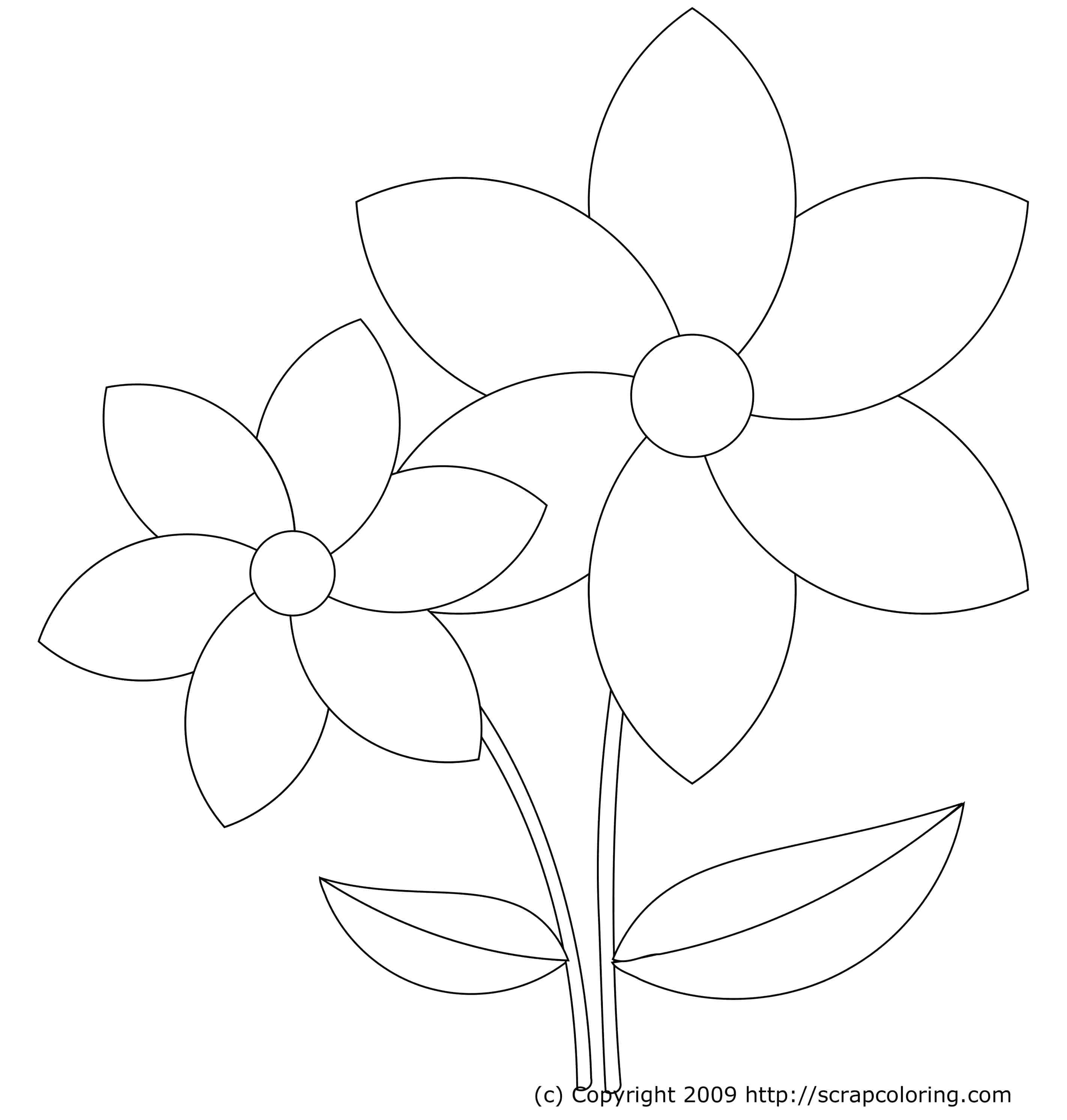 2844x2986 Printable 3d Tulip Template Printable Mamas Gone Crafty Paper