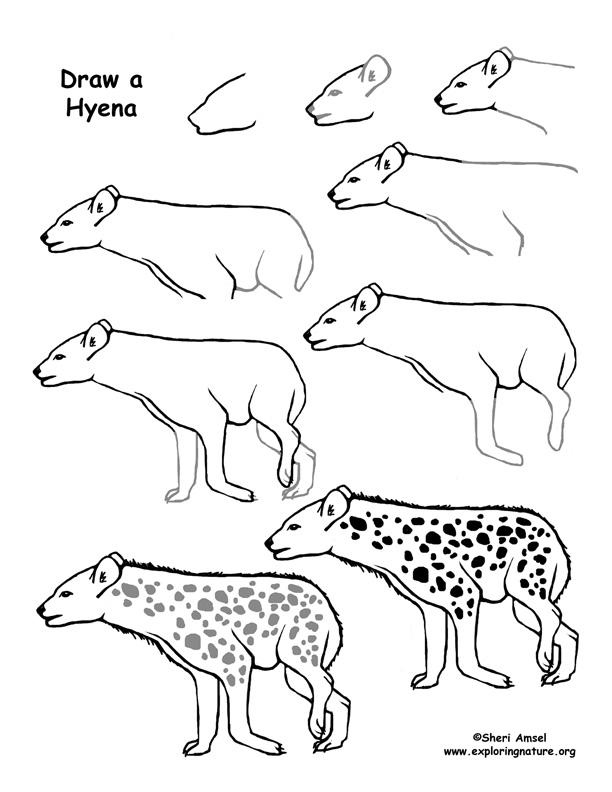 612x792 Hyena Drawing Page