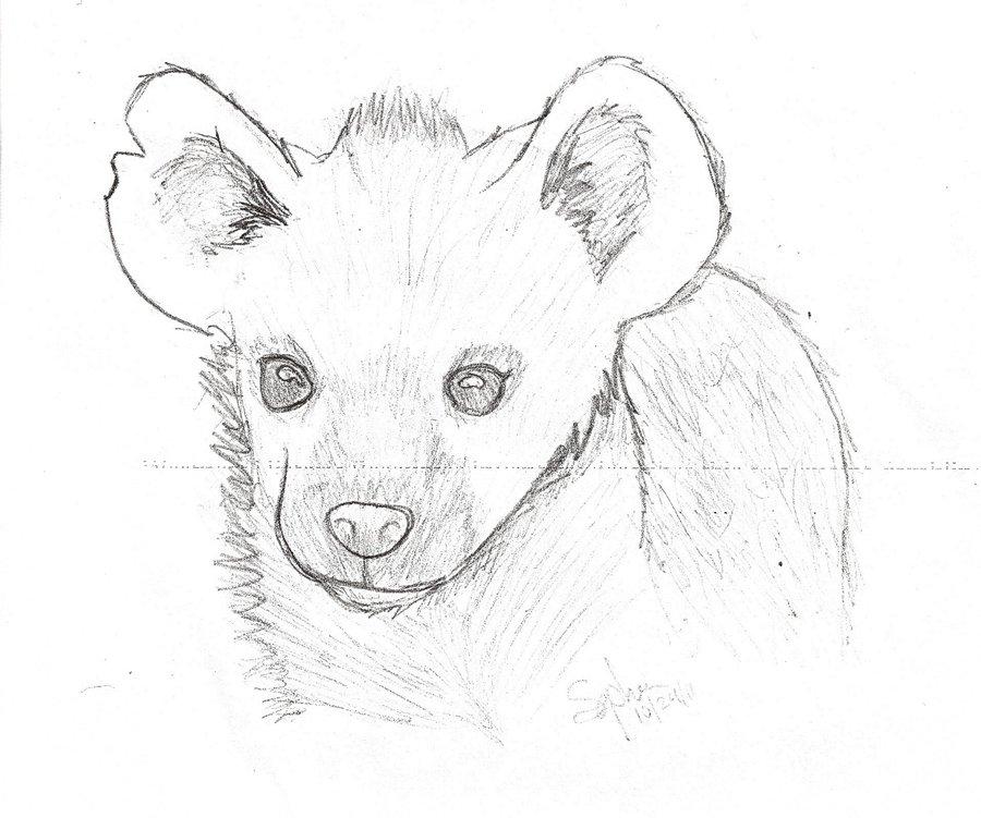 900x751 Hyena Sketch By Deliriousfox