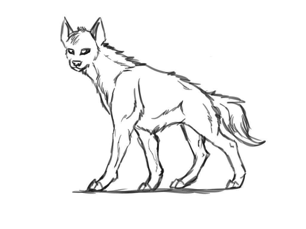 1024x768 Hyena Sketch By Symrea