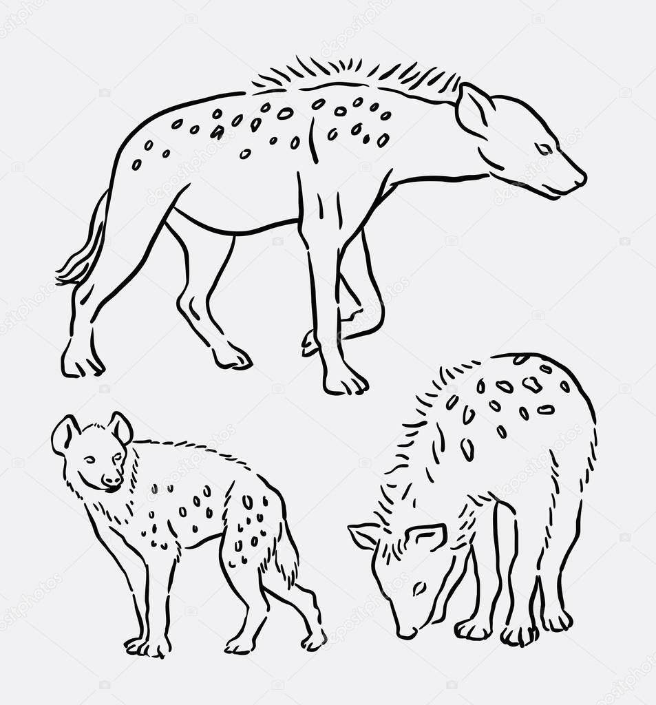 953x1024 Hyena Wild Animal Line Art Drawing Stock Vector Cundrawan703