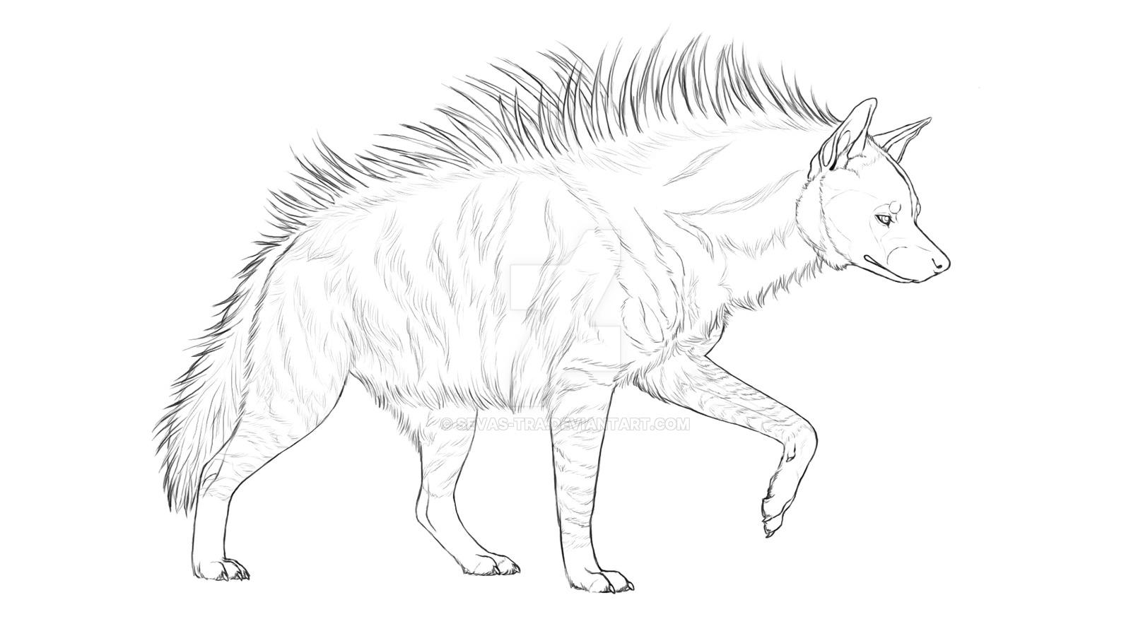 1600x900 Striped Hyena By Sevas Tra