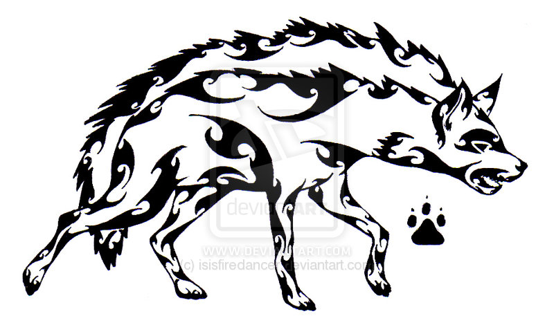 800x470 Tribal Hyena Tattoos Hyena, Tribal Drawings And Tattoo