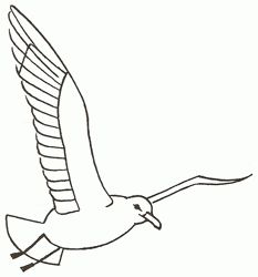 233x250 How To Draw A Seagull In Flight, Step By Step. (Add To Picture