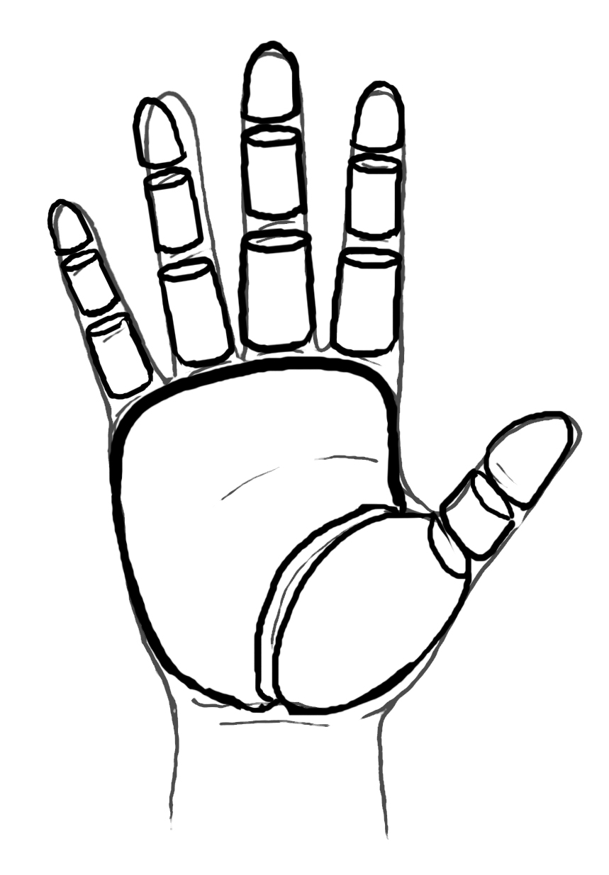 859x1235 Rules Of Thumb For Drawing Hands