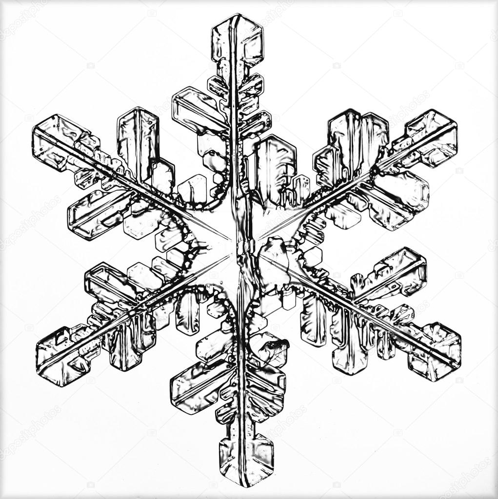 1021x1024 Ice Crystal Stock Photo Xload
