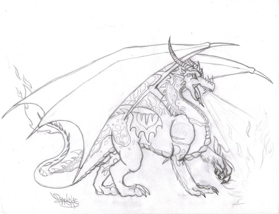900x690 Sapphira Dragon Sketch By Sapphire Blackrose