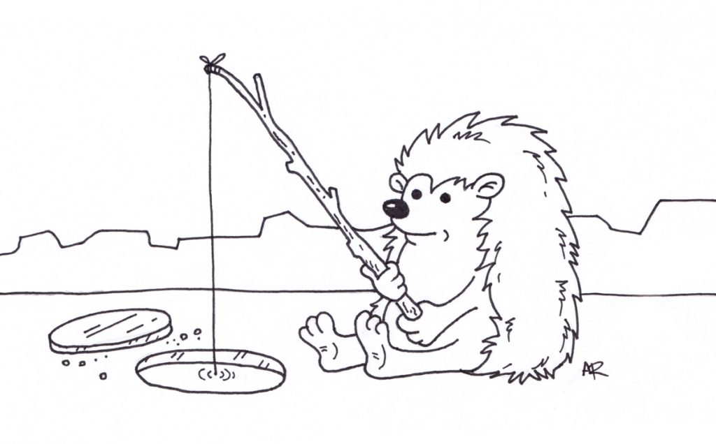 1024x636 Hedgehog Ice Fishing