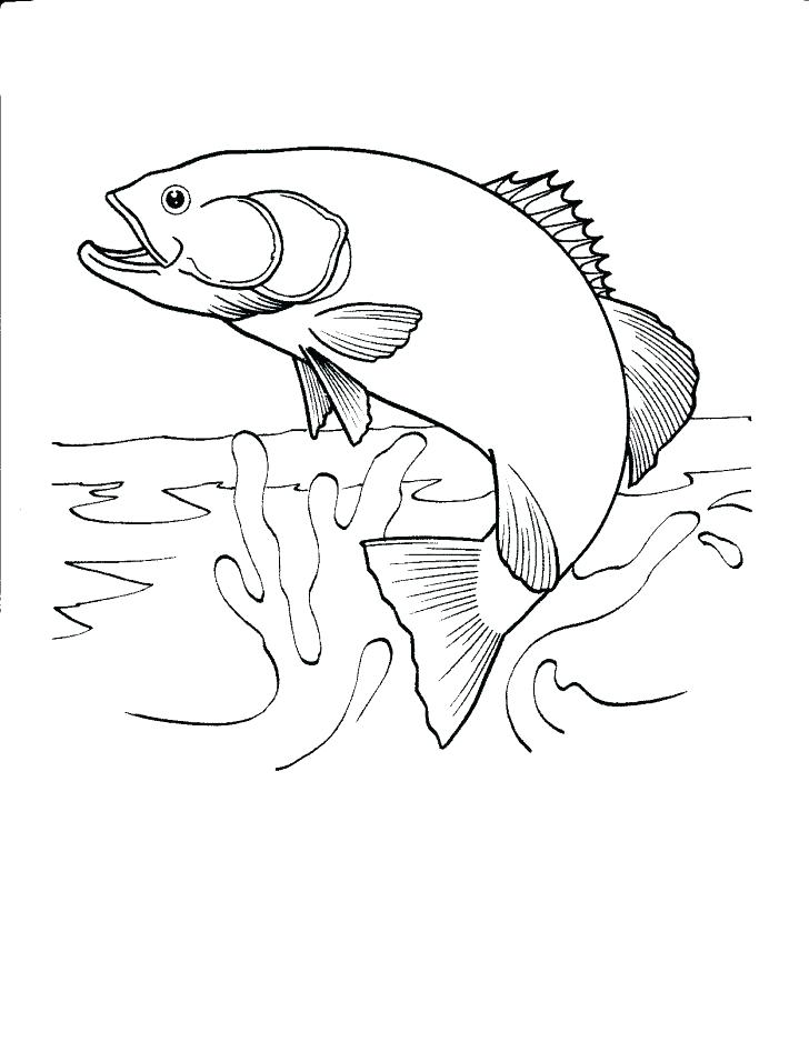 728x938 Here Are Fishing Coloring Pages Images Fisherman Coloring Page