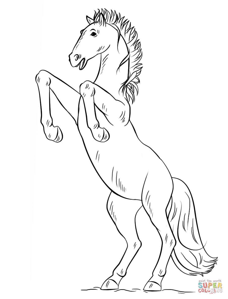 904x1186 Bucking Horse Coloring Page Free Printable Coloring Pages