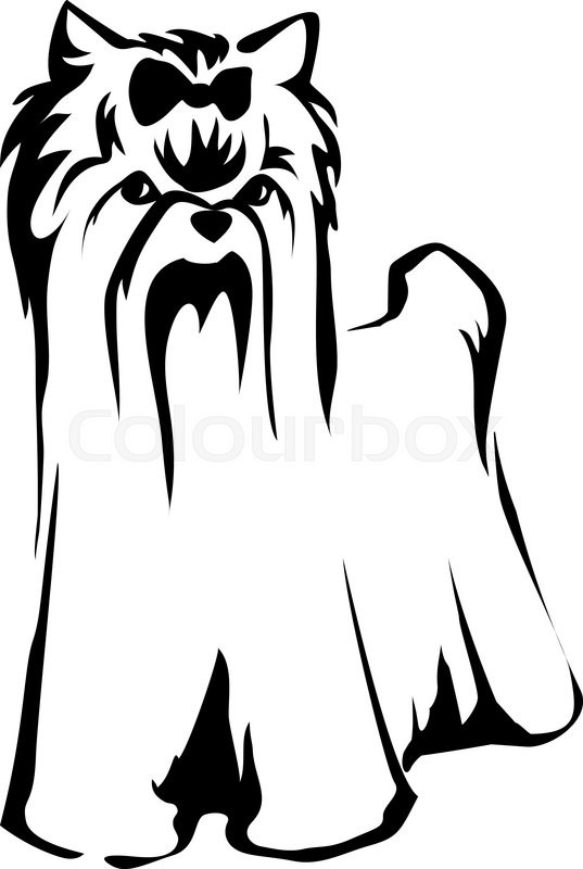537x800 Vector Dog Yorkshire Terrier Icon. Cute Dog Stock Vector Colourbox
