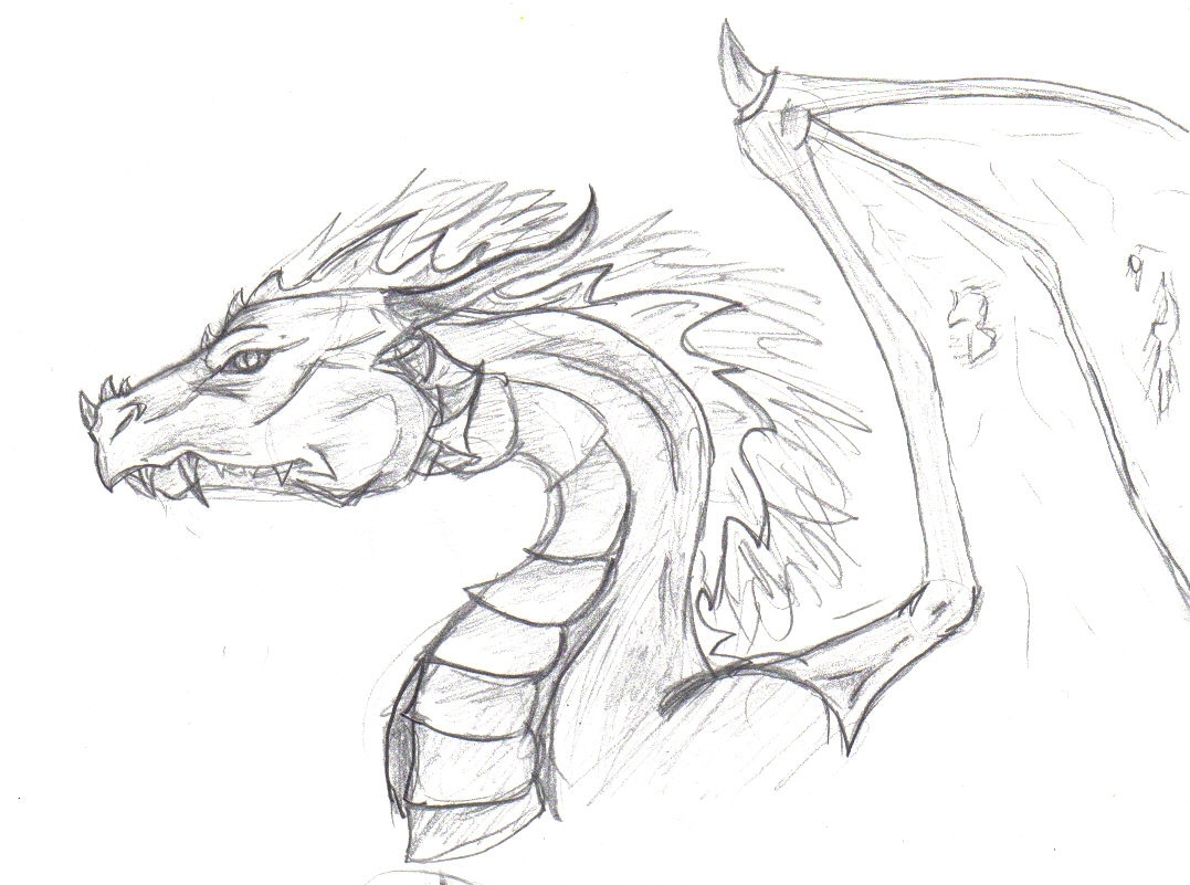 1077x801 Cool Drawing Of Dragons Best Ideas About Dragon Drawings
