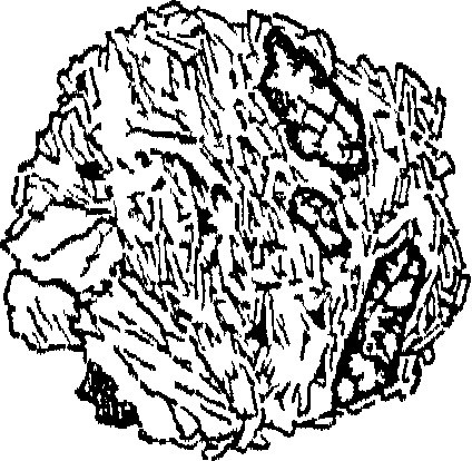 424x414 Image From Page 68 Of A Treatise On Rocks, Rock