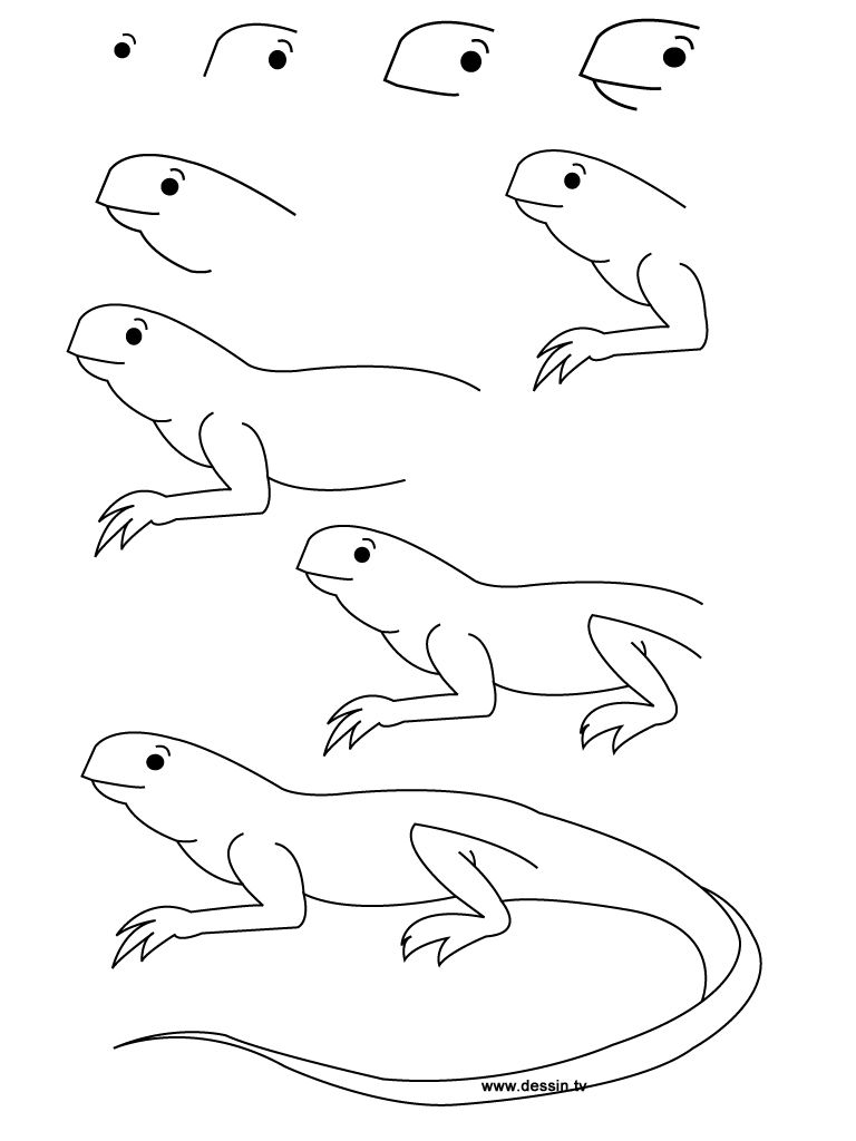 768x1024 Here You Can Find Some New Design About How To Draw A Lizard, Step