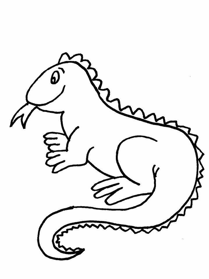 718x957 Iguana