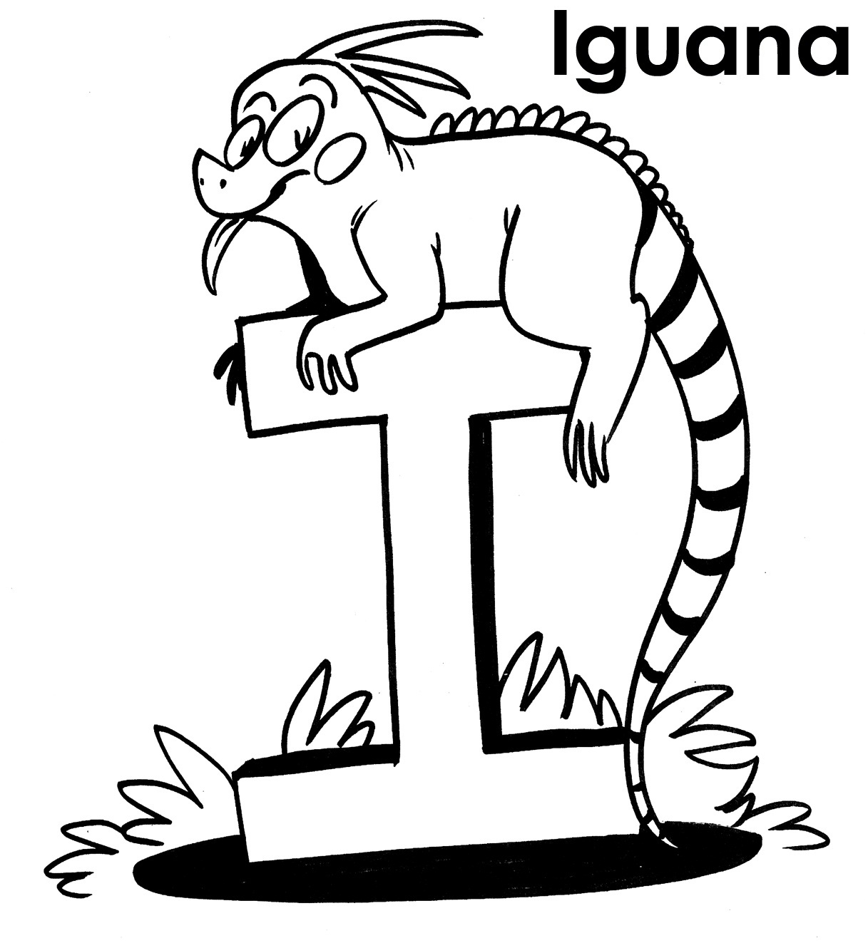 1217x1330 Iguana Coloring Pages