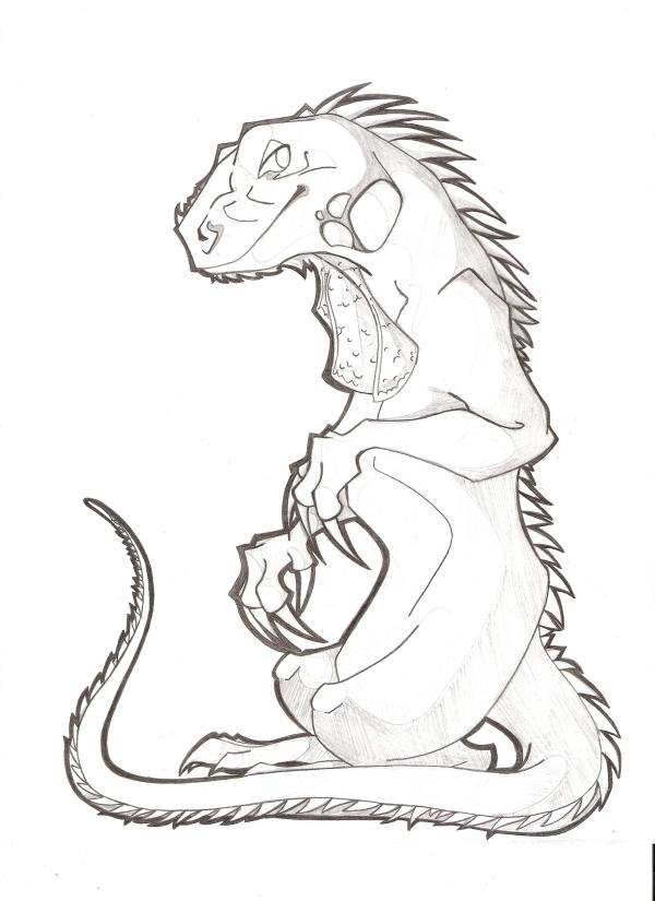 600x825 Iguana Sketch By Km Cowgirl