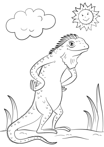 340x480 Cartoon Iguana Coloring Page Free Printable Coloring Pages