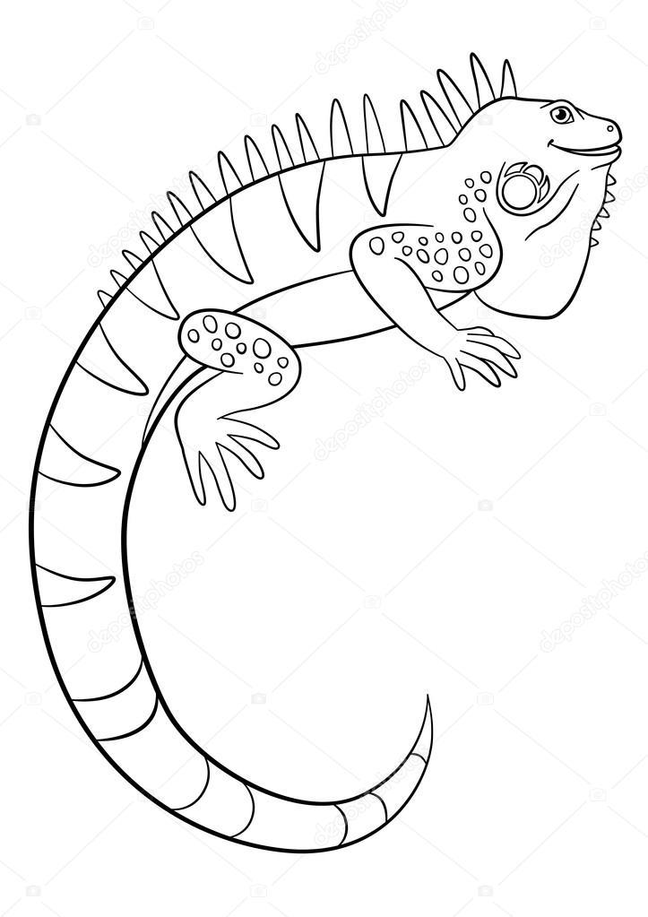 723x1023 Coloring Pages. Cute Iguana Smiles. Stock Vector Ya Mayka