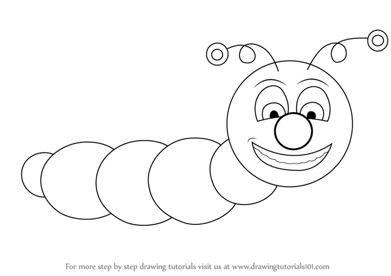 800x566 Learn How To Draw A Caterpillar For Kids (Insects) Step By Step