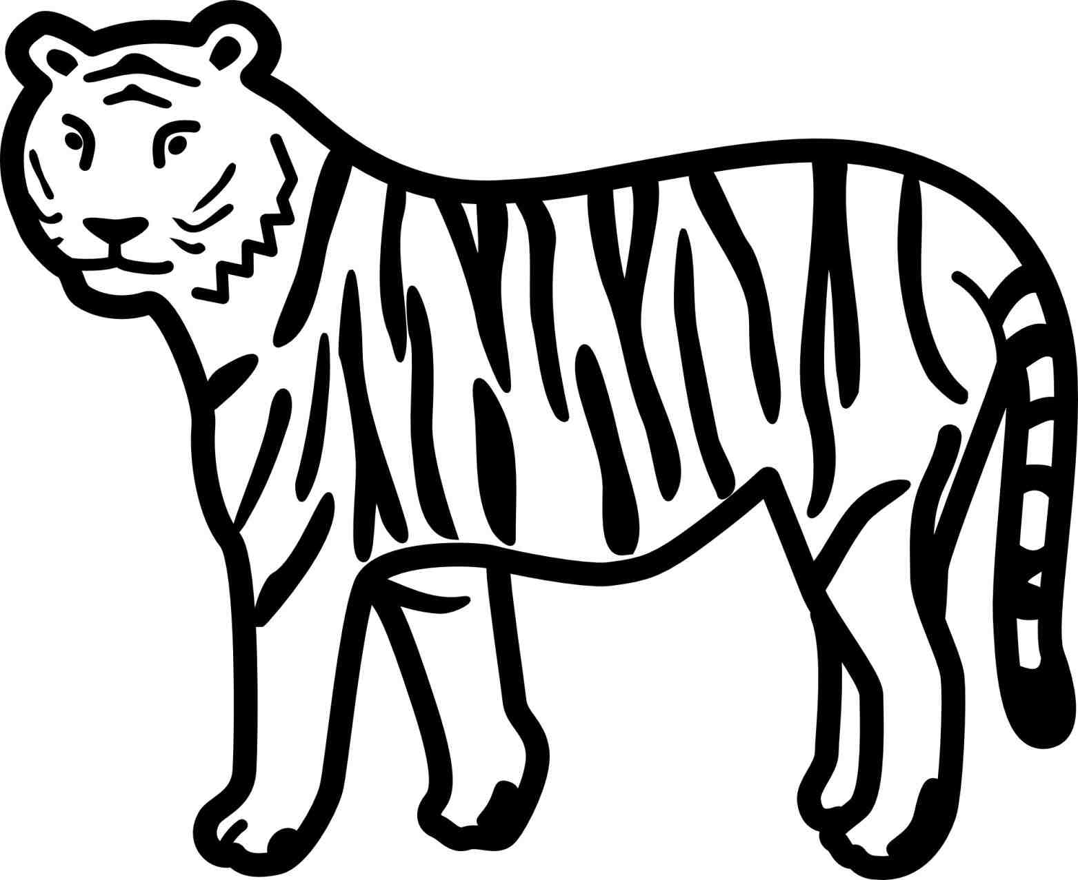 1563x1277 The Images Collection Of Printable Tiger Wild Drawing Ideas