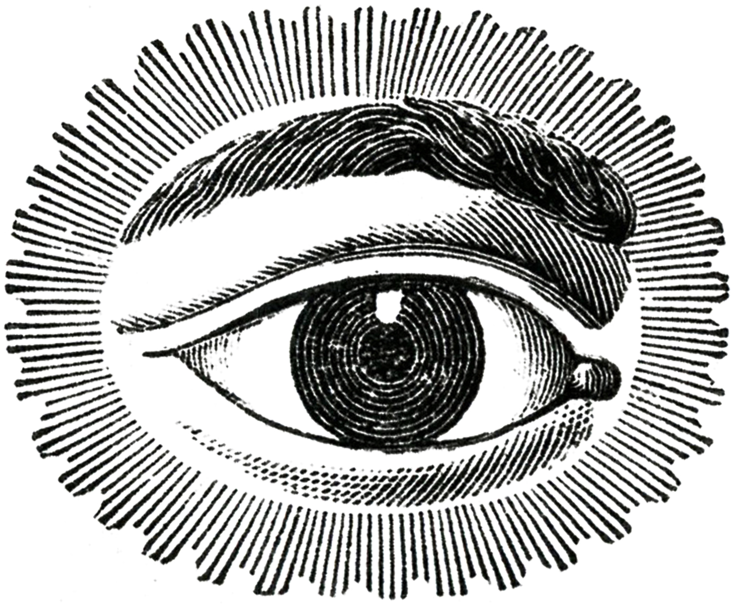 1500x1247 Free Public Domain Image Watching Eye